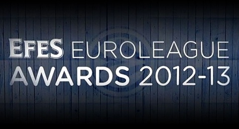 EFES Euroleague Awards 2012-13