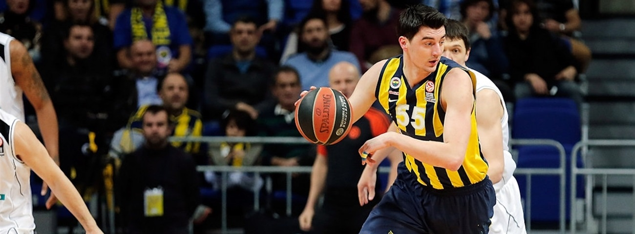 Darussafaka Dogus signs veteran forward Preldzic