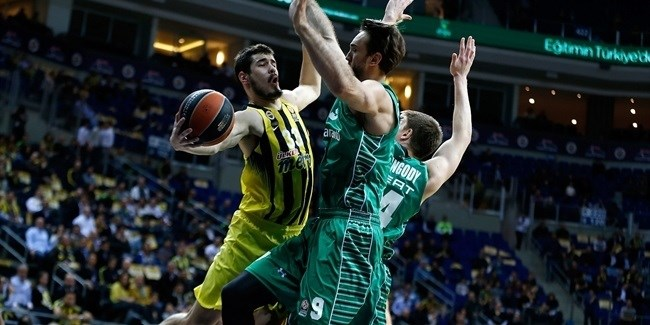 Top 16, Round 11: Fenerbahce Istanbul vs. Darussafaka Dogus Istanbul