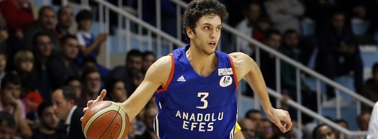 Anadolu Efes invests on Baykan