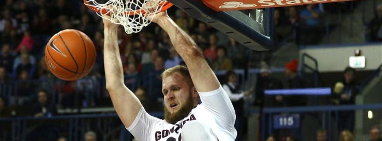 Andorra inks rookie center Karnowski