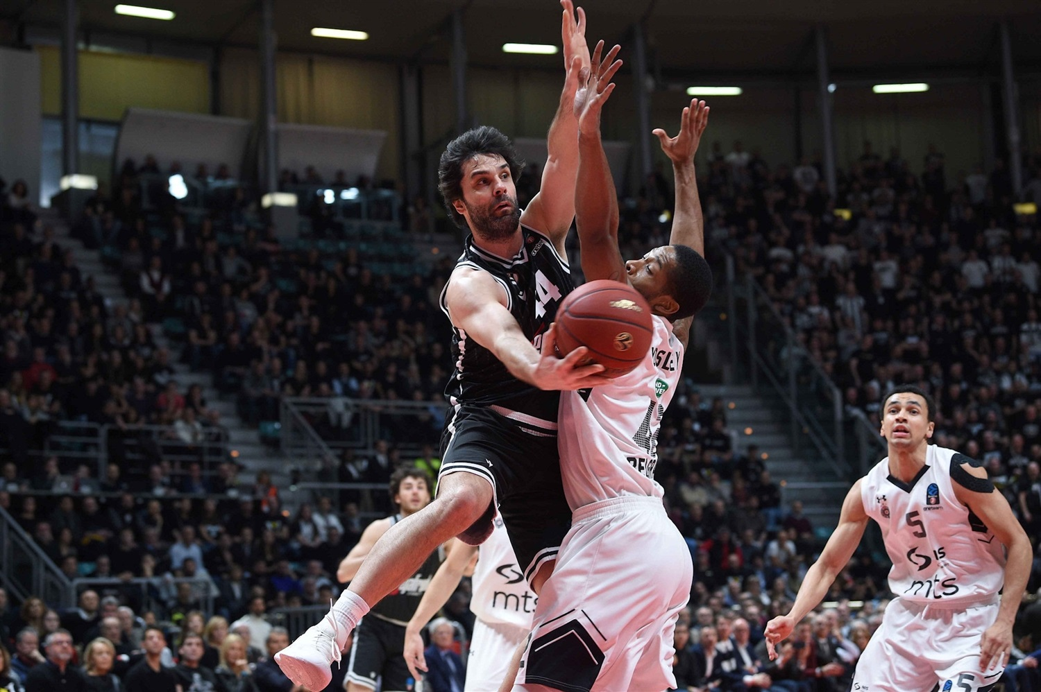 Milos Teodosic - Segafredo Virtus Bologna (photo Massimo Ceretti - Virtus) - EC19