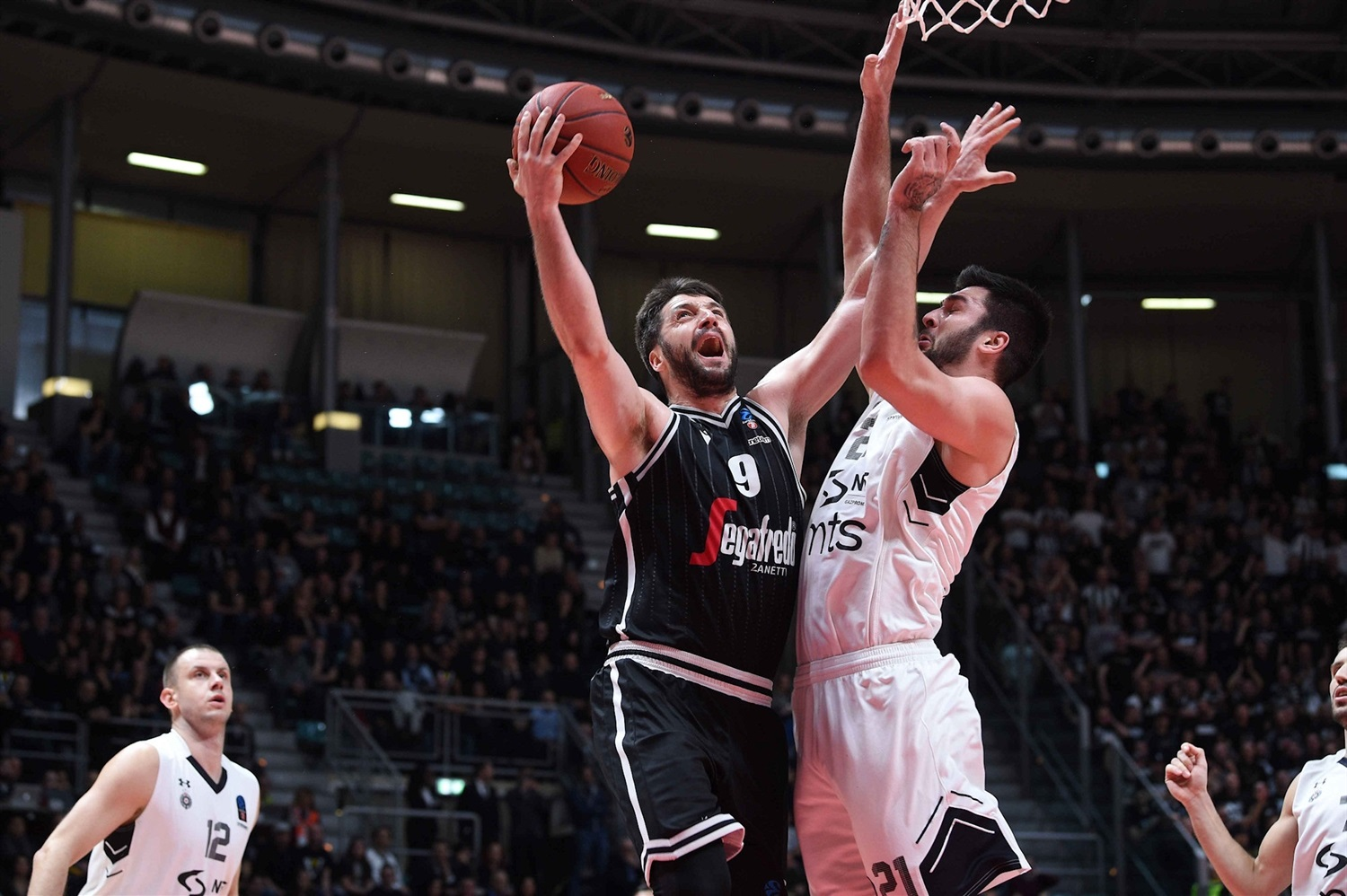 Stefan Markovic - Segafredo Virtus Bologna (photo Massimo Ceretti - Virtus) - EC19