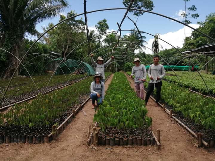 One Tree Planted initiative closing 5